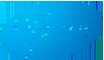 Pfizer logo small