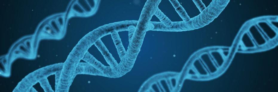 Nejlepší biotech akcie