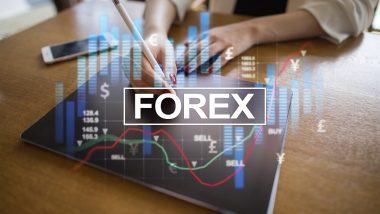 Forex obchodování - průvodce pro začátečníky