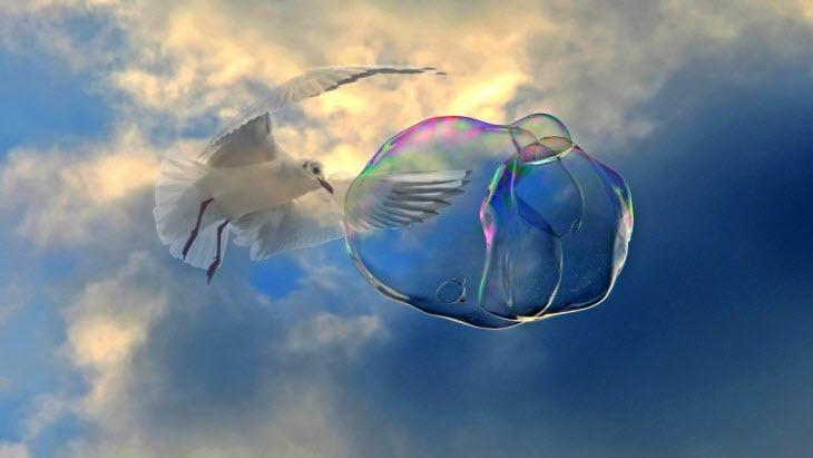 Největší burzovní bubliny v historii