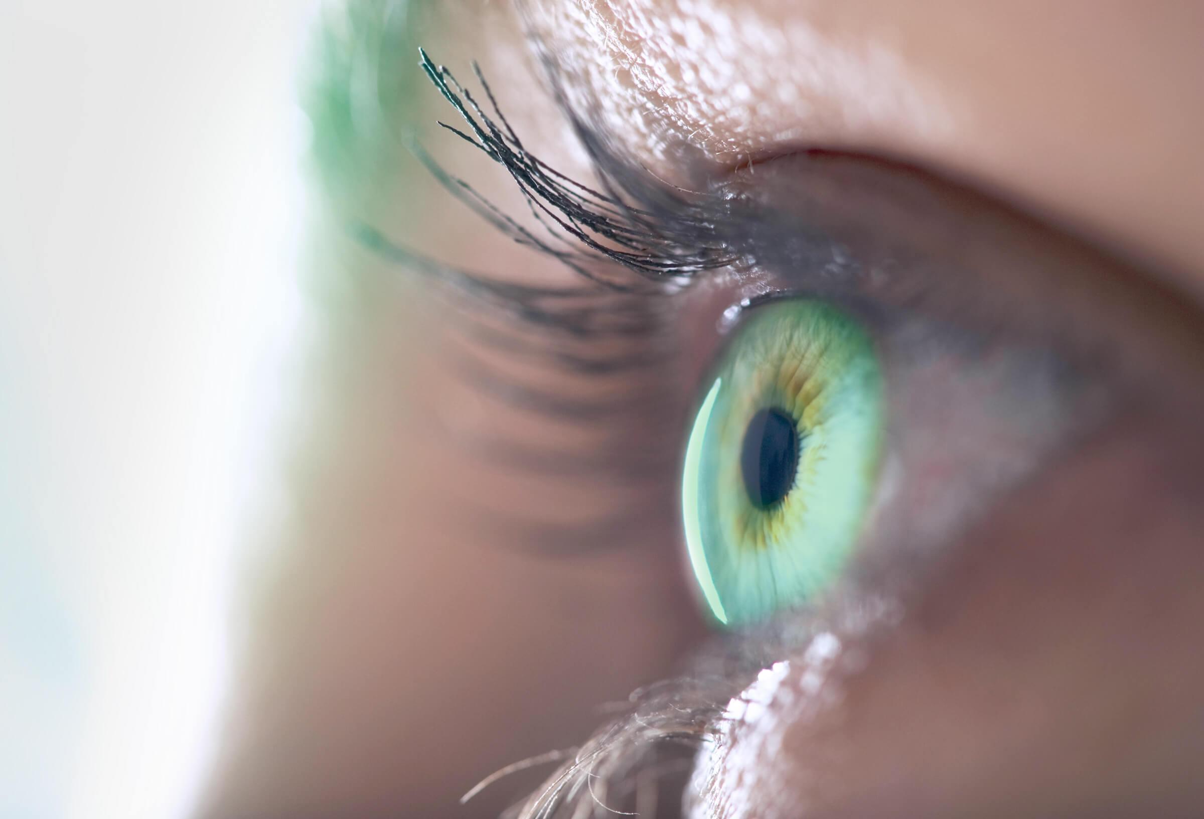 Detail na oko klientky LYNX zajímající se o stažení obchodních platforem